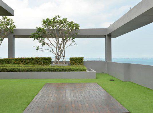 הקמת גינות גג – כל מה שחשוב לדעת